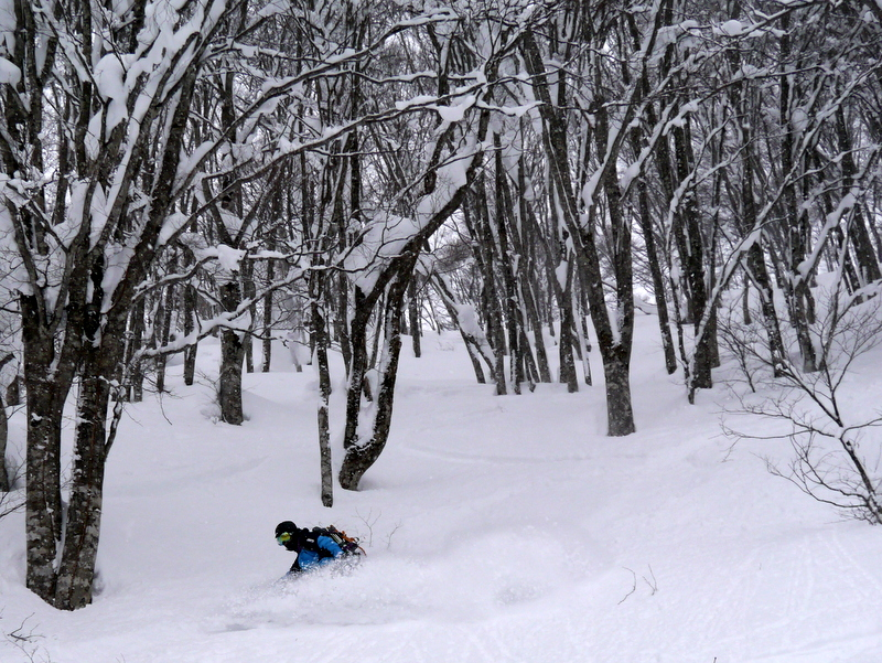 1-2017_Jan_Hakuba_Otari_Backcountry-019
