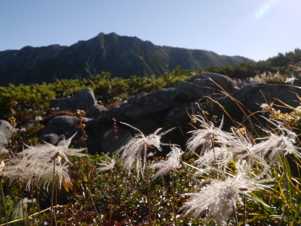 150922雲ノ平からの水晶岳1