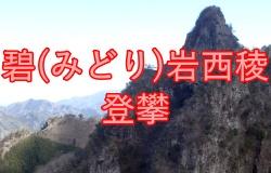 midoriiwa-seiryo